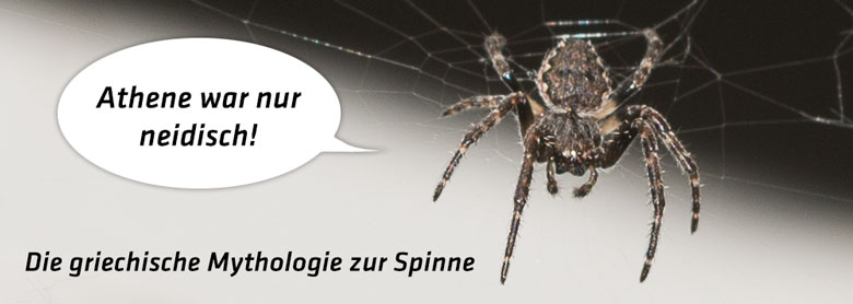 Mythologie zur Spinne
