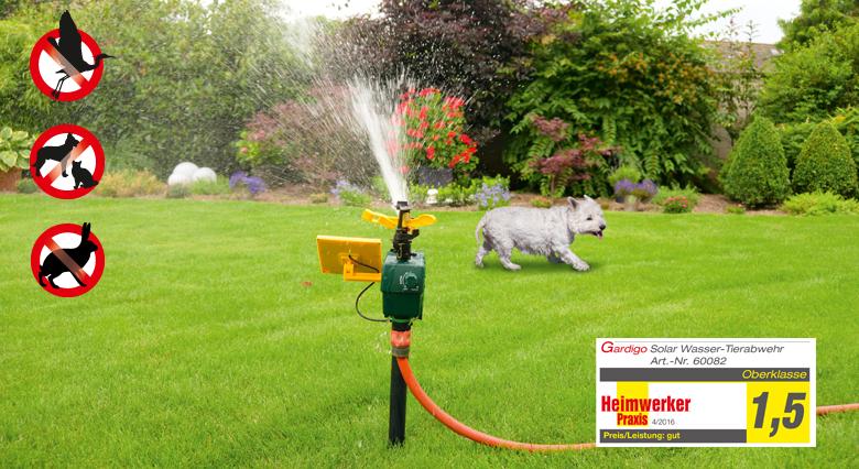 Solar-Wasser-Tierabwehr